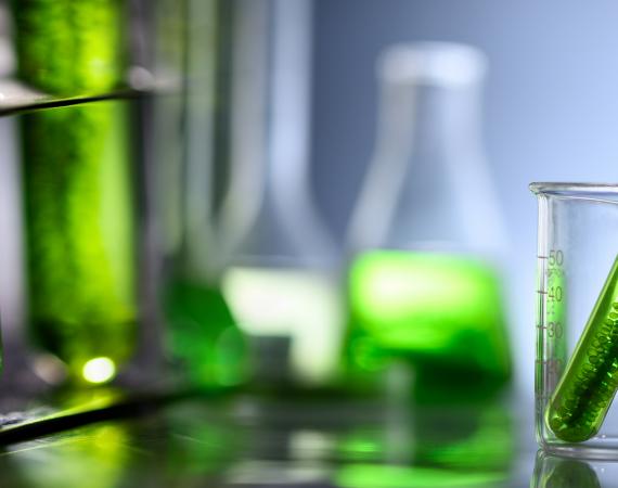 Mise à jour de la liste de produits biocontrôle au 14 août